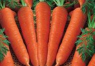 Cà rốt có thực sự giúp giảm cân?