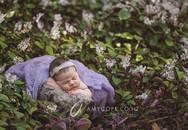 Ngất ngây ngắm chùm ảnh em bé ngủ ngon lành giữa thiên nhiên