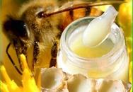 Công dụng chữa bệnh của sữa ong chúa