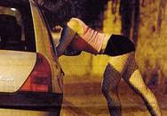 """Bị dừng xe, nữ tài xế """"gạ"""" cả 2 cảnh sát """"quan hệ"""""""