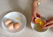 Trứng gà 2 lòng đỏ tại Sài Gòn