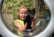 """Kỳ lạ chú mèo sống sót sau gần một tiếng bị """"quay"""" trong máy giặt"""