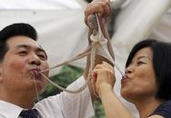 Rùng mình cảnh nhai ngấu nghiến bạch tuộc sống