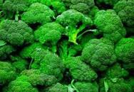 Công dụng chữa bệnh bất ngờ của bông cải xanh