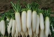 Công dụng tuyệt vời khi ăn các loại củ cải