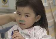 Một phụ nữ Việt mất tích trên phà chìm của Hàn Quốc