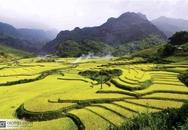 """Gợi ý cho bạn những địa điểm """"giải nhiệt mùa hè"""" tuyệt nhất Việt Nam"""