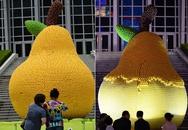 Tác phẩm nghệ thuật ở Trung Quốc bị vặt trụi