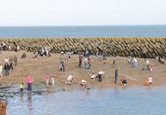 Đua nhau săn vàng trên bãi biển nước Anh