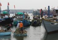 Ngư dân Đà Nẵng chuẩn bị đối phó với cơn bão số 12