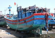 Chủ tàu cá bị đâm chìm nhờ luật sư quyết kiện Trung Quốc