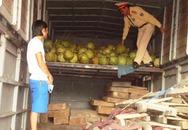 Quảng Bình: Liên tục bắt gỗ lậu trên QL1A