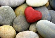 """Những """"hòn đá cuội"""" trong cuộc sống của bạn"""