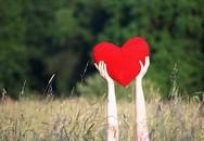 Trái tim đặt nhầm chỗ