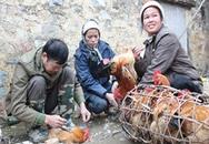 Lạ lùng chợ hoạn gà