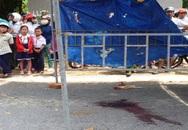 Một lái xe taxi Mai Linh bị giết dã man