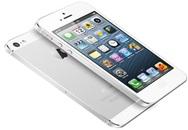 """Top 5 smartphone """"đỉnh"""" nhất thị trường Việt"""