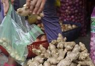 Hoang mang vì gừng Trung Quốc 'ngập' chợ Việt Nam