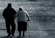 Tình yêu kỳ diệu của người vợ 11 năm chăm chồng mất trí nhớ