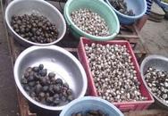 Cua ghẹ 25.000 đồng/kg bán tràn lan trên vỉa hè Sài Gòn
