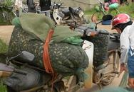 Quảng Bình: Lập tổ tuần tra ngăn bắt cua đồng bằng thuốc sâu