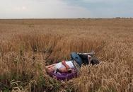 Những bức hình gây ám ảnh kinh hoàng về thảm kịch MH17