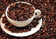Tiêu điều cà phê!