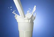 Tâm lý sính sữa ngoại hại ví người tiêu dùng