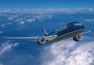 Máy bay Vietnam Airlines phải hạ cánh khẩn cấp giữa đường