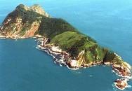 Đảo rắn Brazil: Nơi kinh hoàng nhất thế giới
