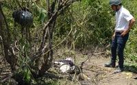 Hai người đàn ông chết bi thương vì cưa đầu đạn
