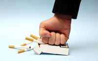 Thuốc lá ảnh hưởng nghiêm trọng đến khả năng sinh sản như thế nào