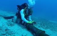 Mẹo tăng tốc độ duyệt web khi cáp quang biển gặp sự cố