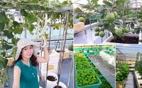Từng không biết gì về trồng trọt, mẹ Việt giờ đã sở hữu vườn rau sạch đẹp như