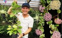 Vườn Cẩm cù đủ loại rực rỡ đáng ngưỡng mộ của chàng trai 9x xứ Huế mê hoa