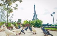 Độc đáo vườn nghệ thuật bên bờ sông Thương