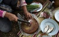 Từ chuyện ăn cá sống gây ung thư gan nên từ bỏ thói quen ăn thực phẩm sống