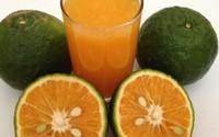 Những người thường xuyên uống nước cam nhất định phải biết điều này
