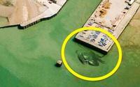 """Những hình ảnh """"kỳ quặc"""" nhất từng được tìm thấy bằng Google Maps"""