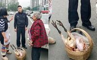 Vượt hơn 200km, người mẹ già một mình lạc lõng giữa thành phố xa lạ chỉ để mang đồ ăn cho con gái