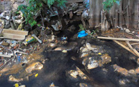 Hải Phòng: UBND quận Kiến An lập đoàn kiểm tra mương Đò Vọ