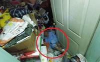 Con trai 5 năm tích trữ rác ngập kín trần nhà, mẹ 79 tuổi mắc kẹt không ra nổi