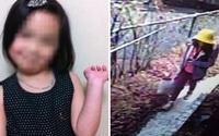 Nguyên nhân cái chết của bé gái người Việt bị sát hại ở Nhật được cảnh sát tiết lộ