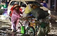 Sài Gòn mưa lớn, cây đổ, 20 tuyến đường ngập sâu
