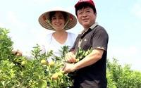 Vườn cây trái bạt ngàn cho hàng tạ quả mỗi vụ của NSƯT Chiều Xuân