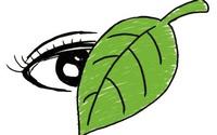 """Bài Văn điểm 10 thi đại học: """"Thành tích như chiếc lá, đừng để lá che mắt…"""""""