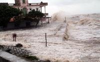 Nhìn lại những hình ảnh xót lòng nơi siêu bão quét qua