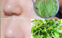 Lưu ngay công thức làm đẹp da, lấp đầy mụn rỗ bằng lá rau răm siêu đơn giản