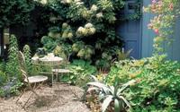 Biến sân vườn trở nên ấn tượng chỉ với những mẹo nhỏ sau