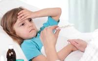Bệnh thường gặp và món ăn cần tránh (5): Người bị sốt xuất huyết ăn gì để nhanh khỏi nhất?